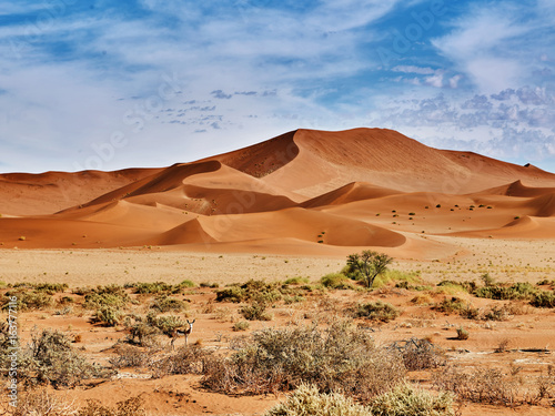 Poster Zandwoestijn desert of namib with orange dunes
