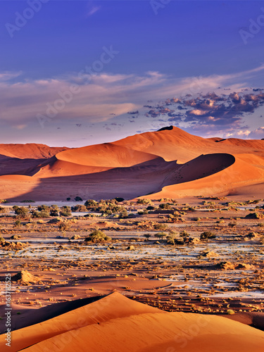 Photo sur Toile Desert de sable desert of namib with orange dunes