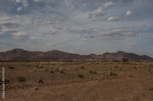In de dag Grijs Morocco steppe landscape with trees and mount at background. Area between Atlas mountains range and Sahara desert.