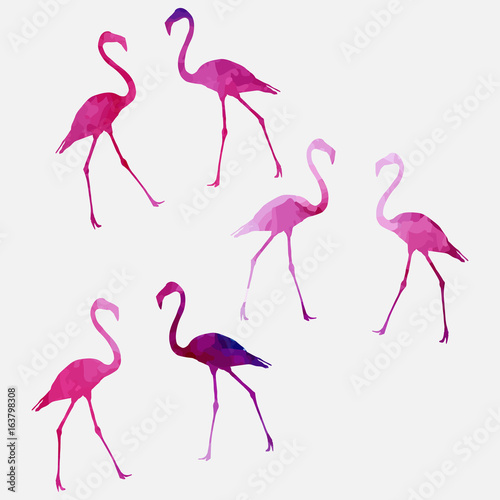 Canvas Prints Flamingo Bird Set of a flamingo