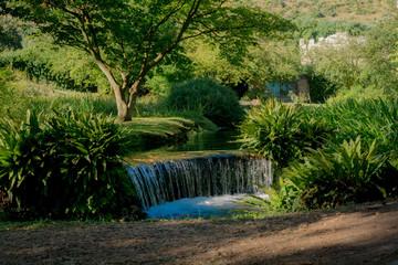 Acqua, piante e alberi: la natura nel giardino di ninfa