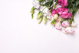 Pink and white eustoma flowers on white textured background. Floral mock up.View from above.