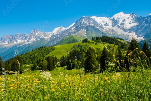Staande foto Alpen Mont Blanc