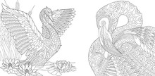 Coloring Page Collection Of Swan And Flamingo. Freehand Sketch For Adult Antistress Colouring Book In Zentangle Style.