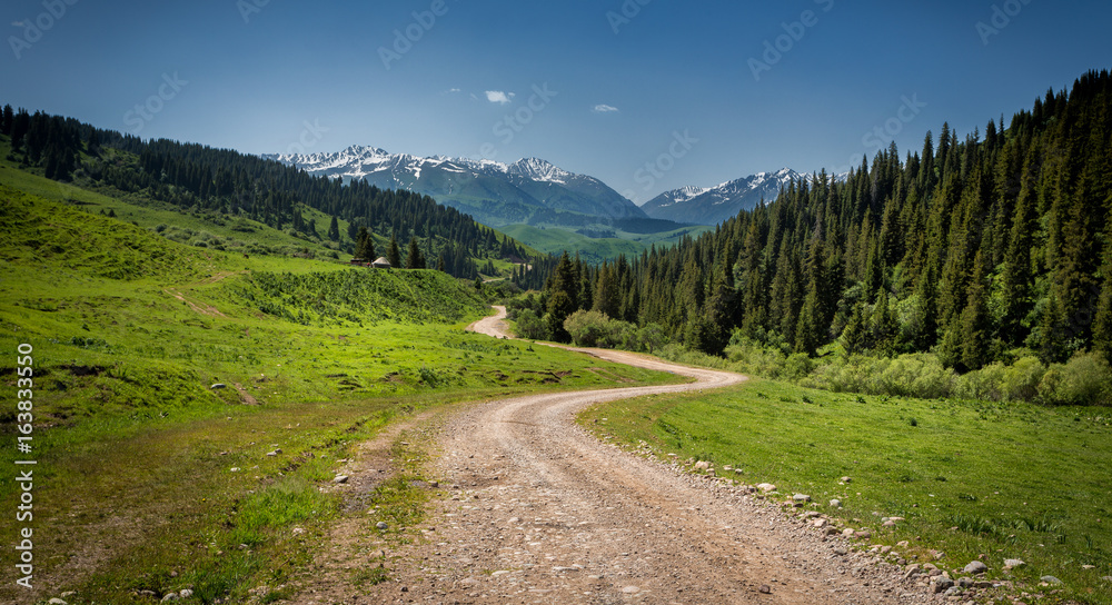 Fototapety, obrazy: road to the mountains