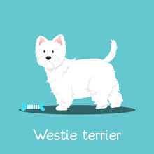 Westie Terrier Dog With Bone O...