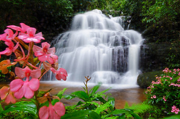 Panel SzklanyMandang waterfall ,Thailand,flower