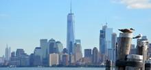 Vue De Manhattan Depuis Elis Island