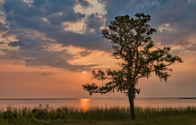 Sunset On Mobile Bay