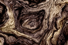 Curly Wood Texture