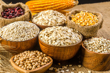Agriculture Products,grains An...