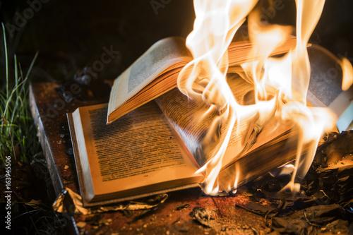 burning books Fototapet