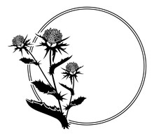 Round Frame With Thistle Silho...