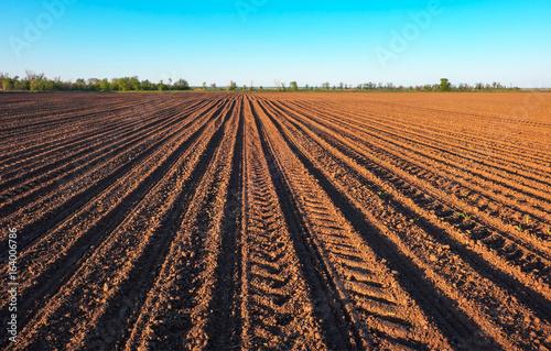 Fotografie, Obraz Preparing field for planting