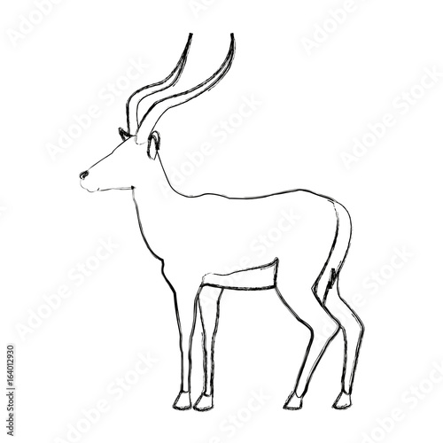 Portrait Of A Standing Impala Africa Mammal Wild Vector Illustration