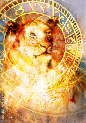 Fotomurales - beautiful painting of lioness with zodiac motive in floating space energy and light.