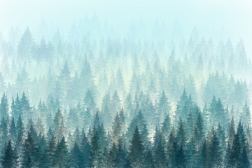FototapetaTrees in morning fog. Digital painting.