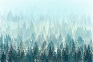 Fototapeta Trees in morning fog. Digital painting.