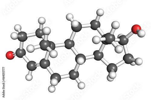 Photo Testosterone molecule, ball and stick model
