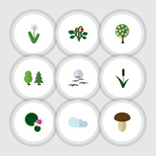 Flat Icon Natural Set Of Forest, Tree, Lotus And Other Vector Objects. Also Includes Bird, Cattail, Fruit Elements.