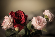 Bouquet Of Pink And Red Fabric Roses, Soft And Romantic Vintage Filter, Looking Like An Old Painting, Flowers Still Life