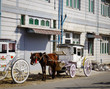 Horse cart on street in Pyin Oo Lwin, Myanmar