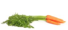 Fresh Carrots On White Backgro...