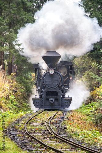 Fotografía Steam locomotive in forest railways in museum of Kysuce village, Slovakia, Europ