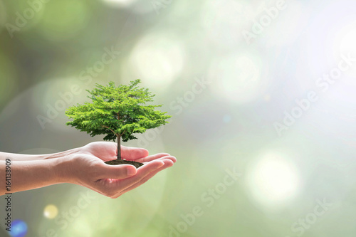 Leinwand Poster Arbor day with tree planting volunteering to save green environment and natural
