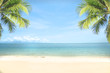 tropical sea beach with coconut tree. copy space ready for your text.