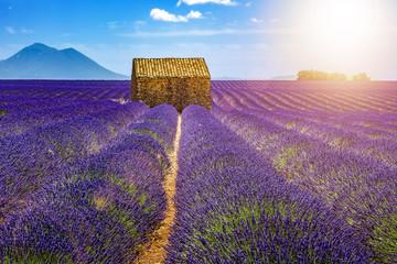Fototapeta na wymiar Landscape in Provence