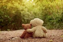 Two Teddy Bear Relax In Mangro...