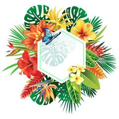 Naklejka Egzotyczne Banner from tropical plants
