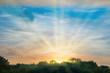 Leinwandbild Motiv Sunset over forest silhouette