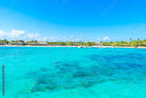 In de dag Groene koraal Akumal beach - paradise bay at turtle beach in Quintana Roo, Mexico - caribbean coast