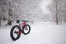 Fat Bike Standing In The Snow