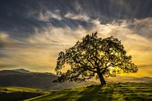 California Foothills Sunset