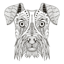 Schnauzer Dog Head Zentangle Stylized, Vector, Illustration, Freehand Pencil, Hand Drawn, Pattern. Zen Art. Ornate Vector. Lace.