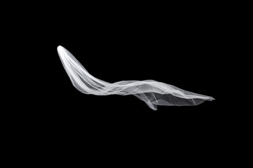wedding white Bridal veil isolated on black background. veil flutters in the wind
