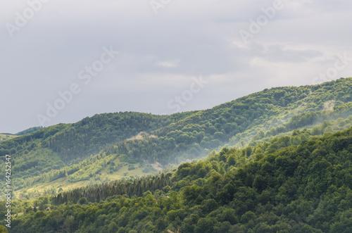 Foto op Canvas Pistache Carpathian mountains landscape in Ukraine in the summer season in Yaremche
