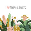 Hand drawn tropical house plants. Scandinavian style illustration, home decor. Vector print design with wild flowers and lettering - 'I love tropical plants'.