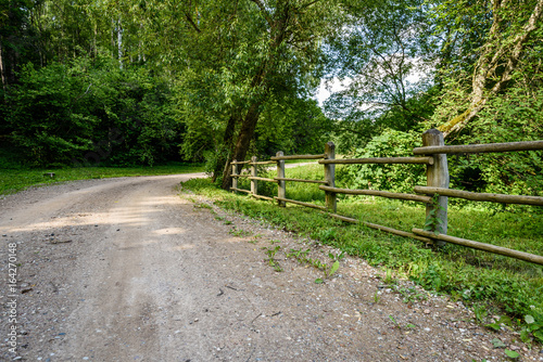 Poster Campagne gravel road in summer countryside
