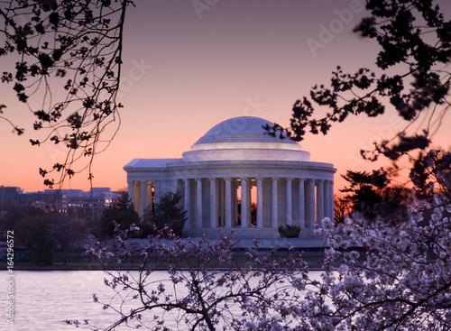 Aluminium Prints Cherry Blossom and Jefferson Memorial