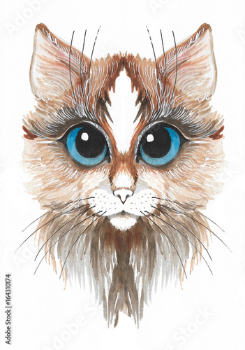 Poster Croquis dessinés à la main des animaux Hand drawn watercolor brown cat with blue eyes