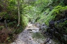 Kysel Ravine In Slovak Paradis...