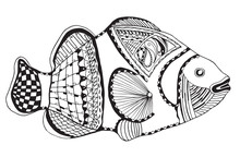 Clownfish Zentangle Stylized, Vector, Illustration, Freehand Pencil, Black And White. Zen Art.