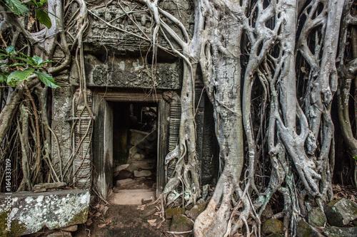 Foto op Plexiglas Bedehuis Angkor Wat temple