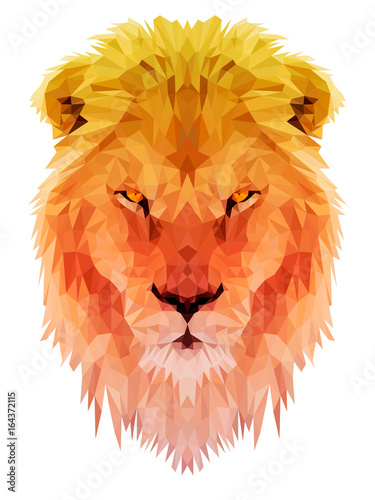Photo Lion vector polygon triangulate