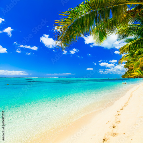 Poster Tropical plage Tropical getaway - perfect beach with turquoise waters
