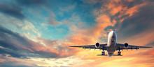 Landing Airplane. Landscape Wi...